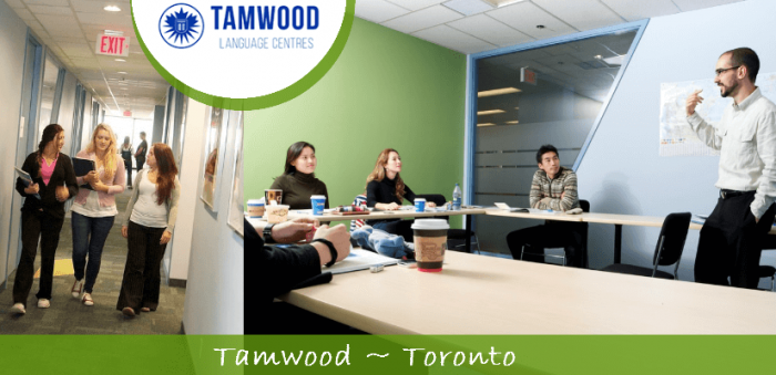 czechus_studuj_v_kanade_tamwood_careers4